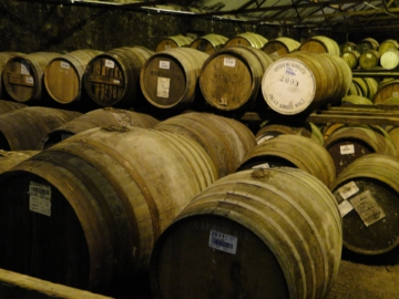 Islay Whisky Scotch